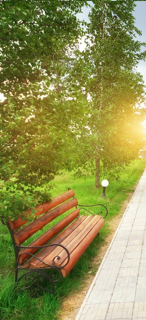 Gestion des espaces verts ipso Entreprise entretien espace vert